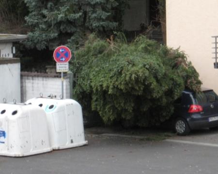 Parkverbotsschilder machen manchmal Sinn =)